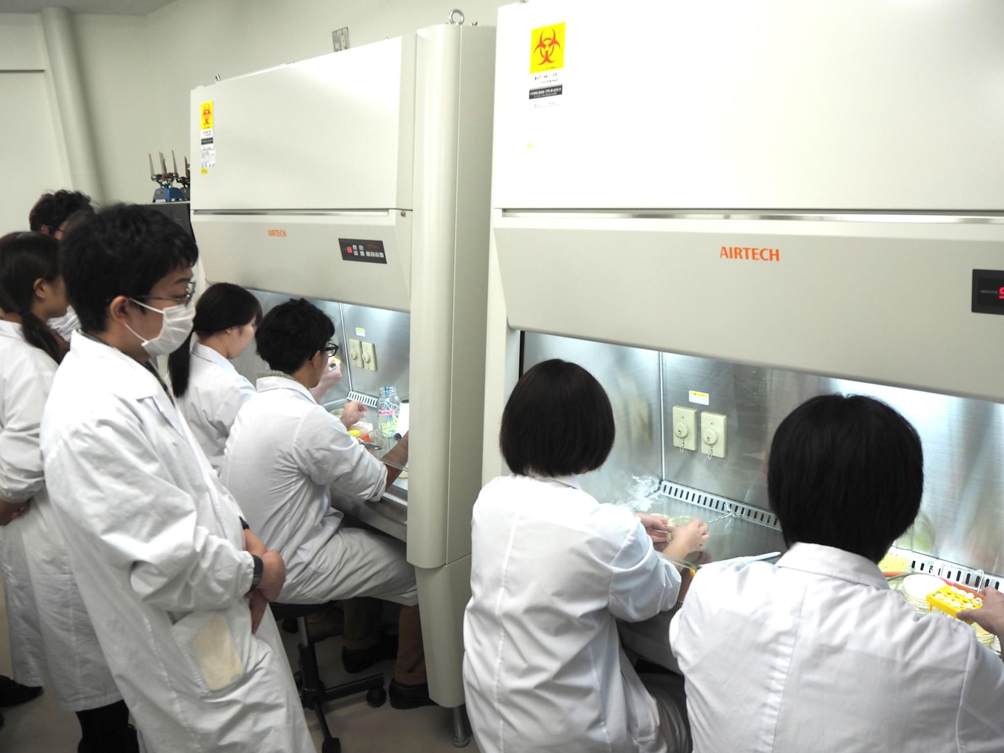 生命工学科3年生:生物工学実験I...