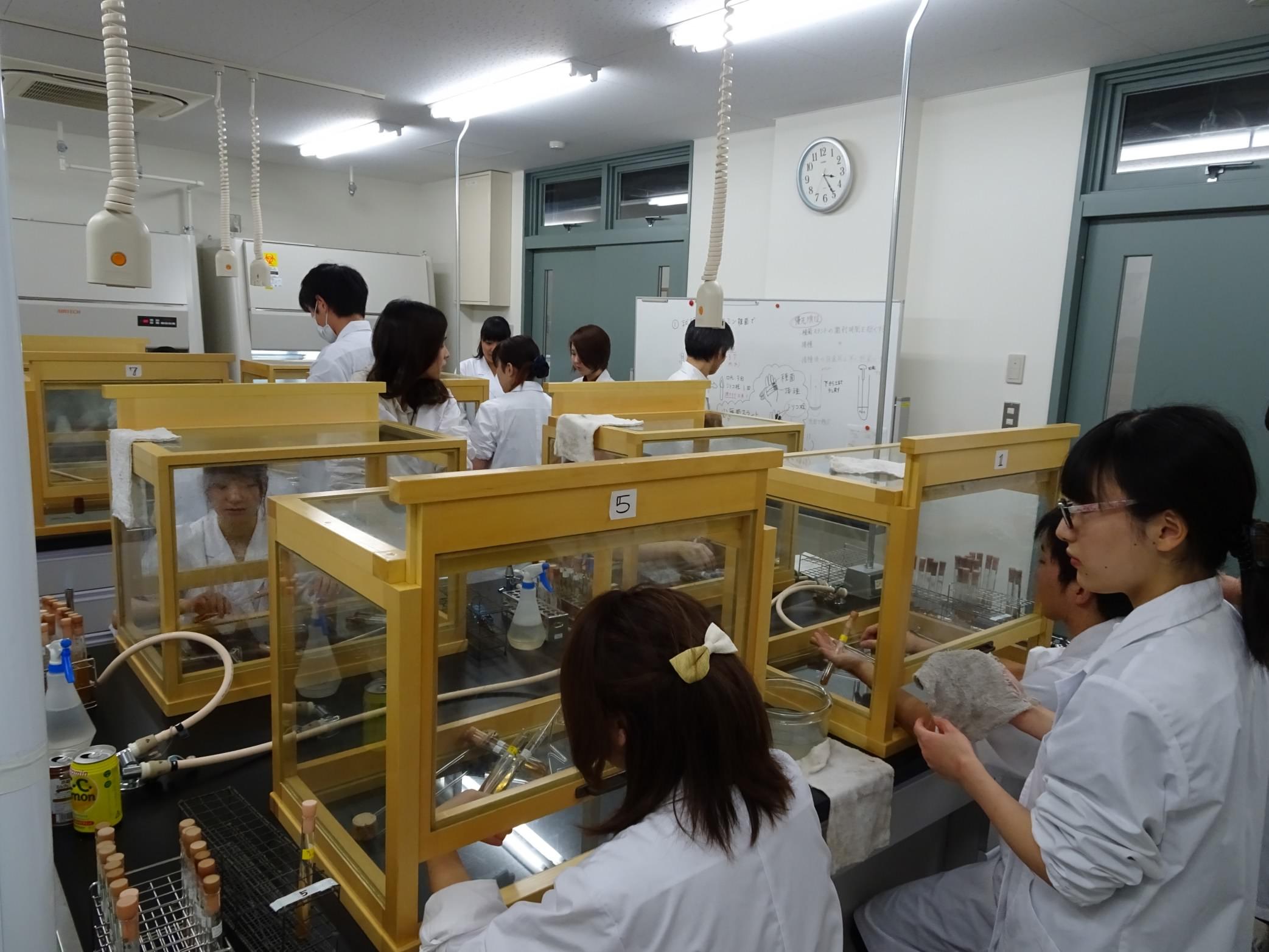 3年生:生物工学実験III(応用微生物学)実施中